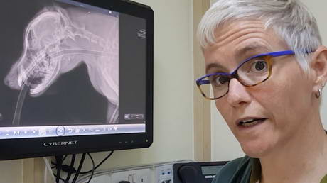 Finding a Needle with an X-ray